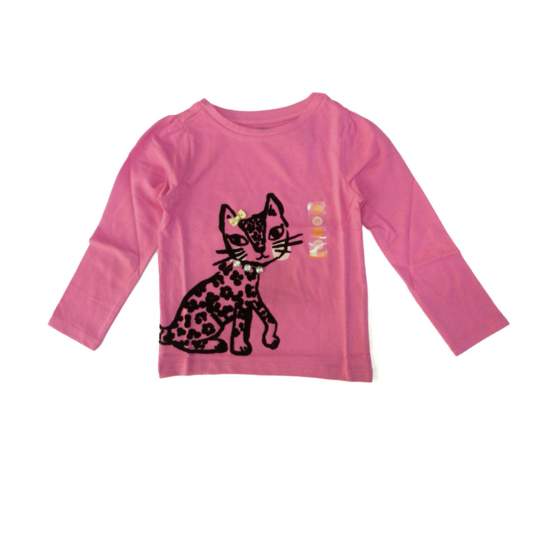 Gymboree 17 Gy Fall 2