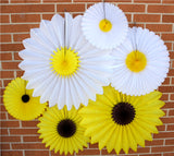 Daisy Tissue Paper Fan - 6-Pack - MULTIPLE SIZES