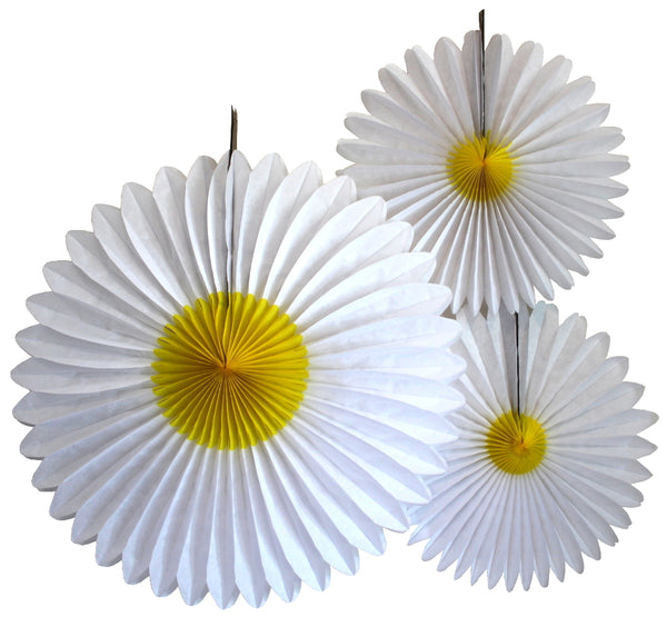 Set of 3 Daisy Fans - 13 and 20 inch
