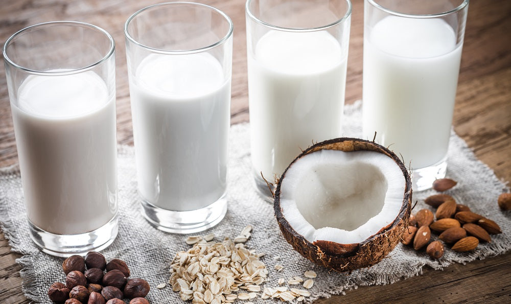 A Guide to Milk Substitutes for Dairy-Free Lifestyles