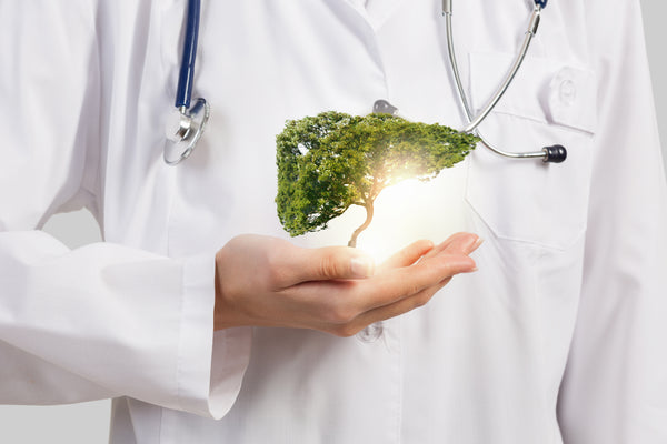 Image of a half-body doctor with a stethoscope on is neck and holding a miniature tree on his right hand.