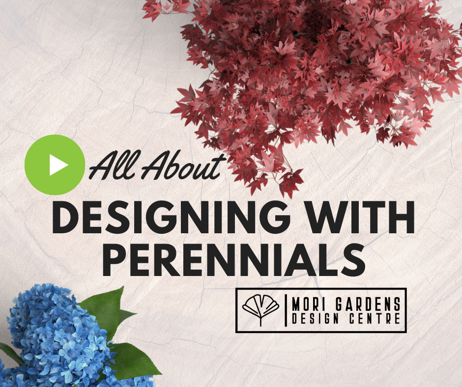 Designing with Perennials Part 1