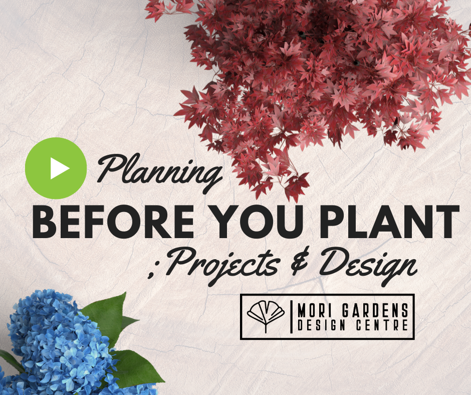 Planning Before You Plant : Design Seminar