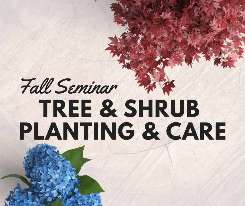 Fall Planting & Care for Trees & Shrubs