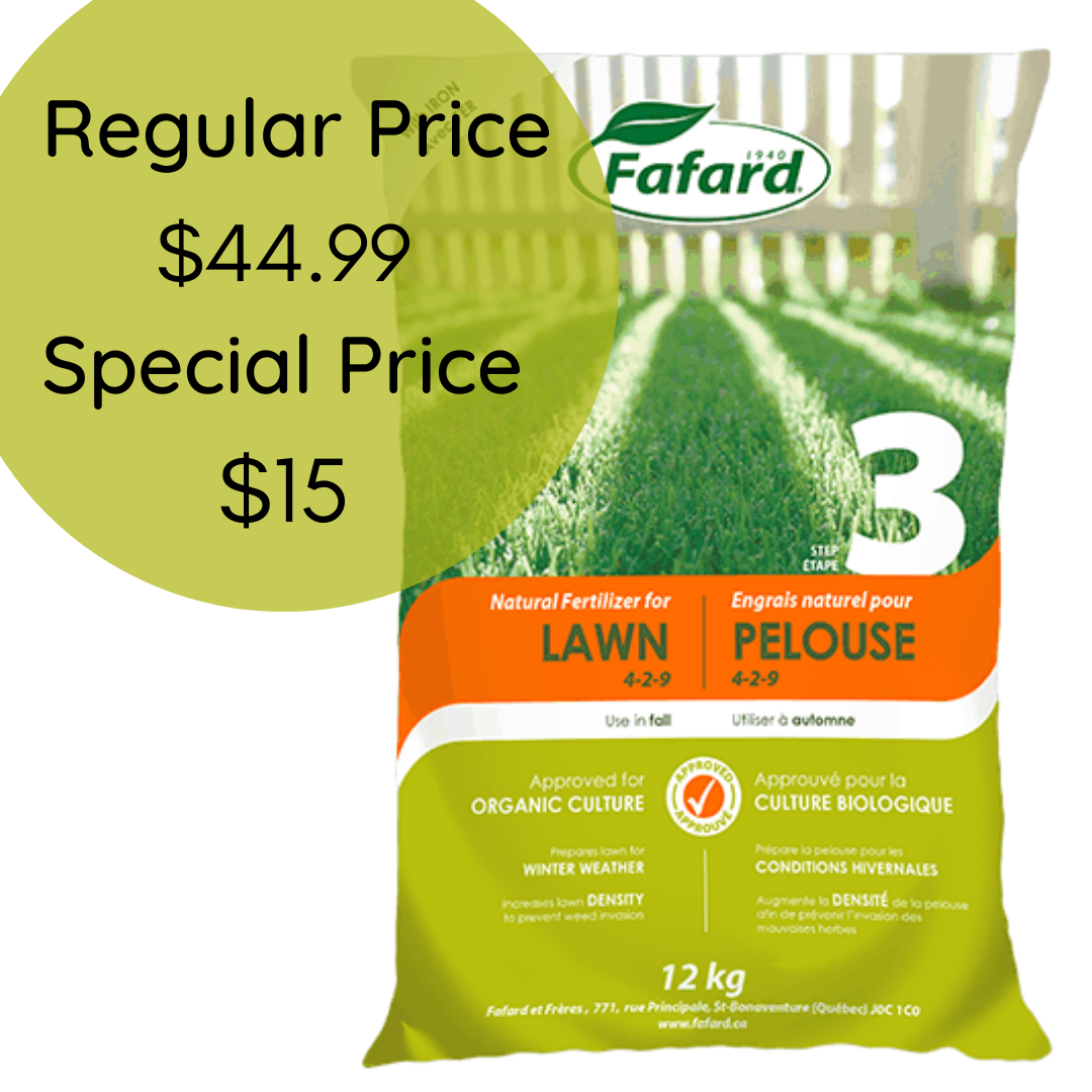 Lawn Fertilizer for Fall (Natural)
