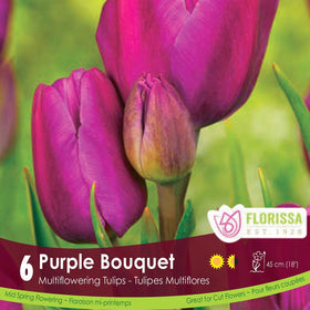 Tulips Purple Bouquet - Preorder - Mori Gardens