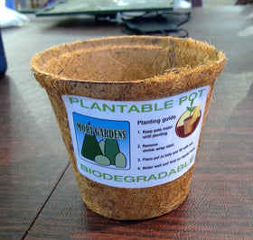 Plantable Coco Fiber Pot (Biodegradable)
