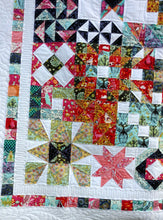 Load image into Gallery viewer, Sampler Quilt modern Tula quilt