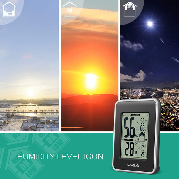 Indoor Thermometer, Hygrothermograph | AMIR