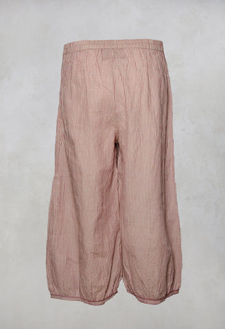 Gus Peg Trousers in Vichy