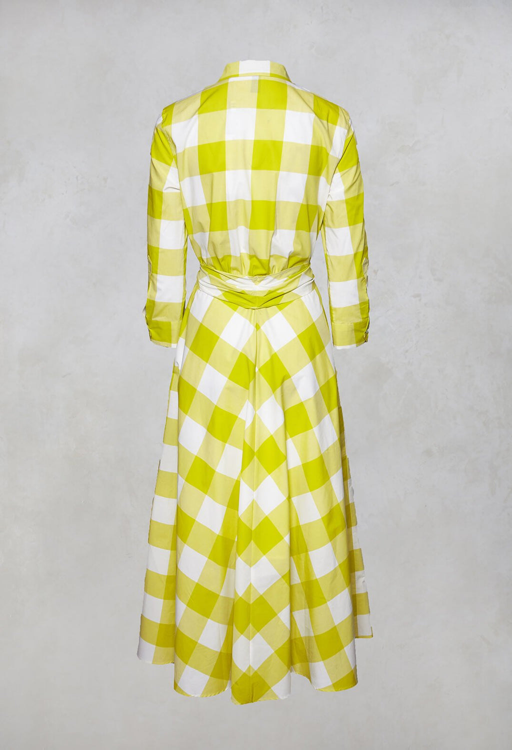 3/4 Sleeve Shirt Dress in Lime/White