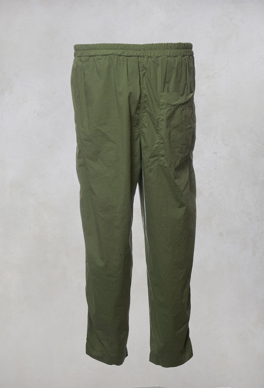 Terra P Trousers in Aloe
