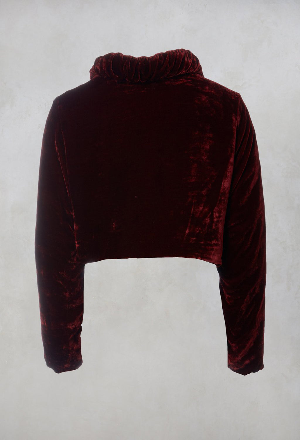 Velvet Cropped Jacket in Ruby