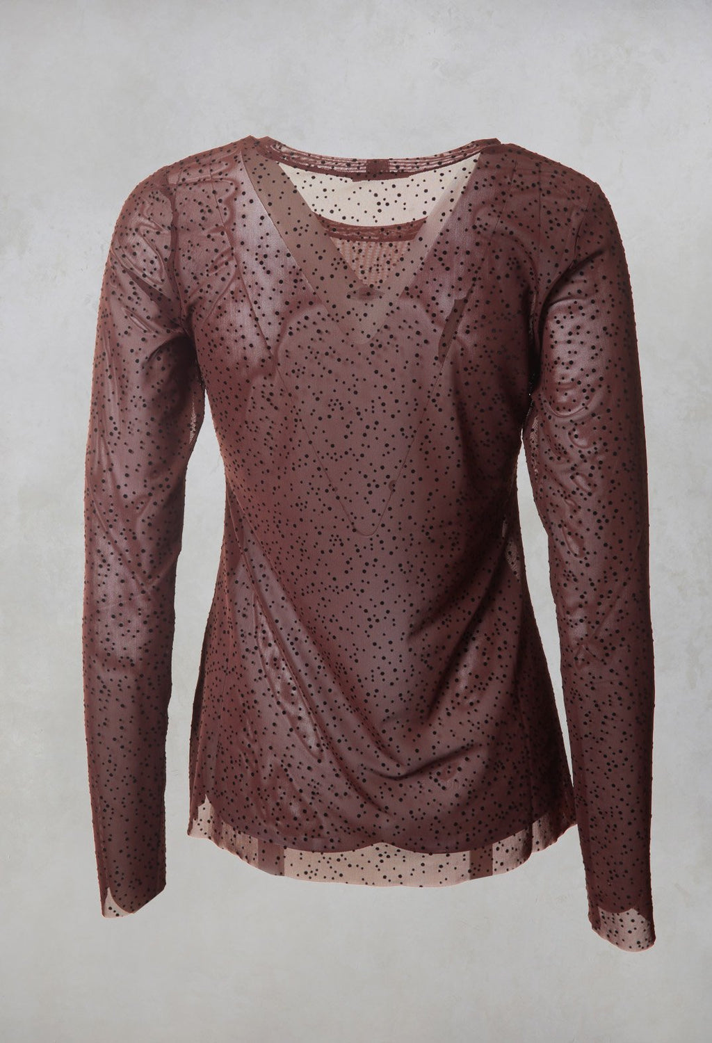 Sheer Textured T-Shirt in Wine Spot