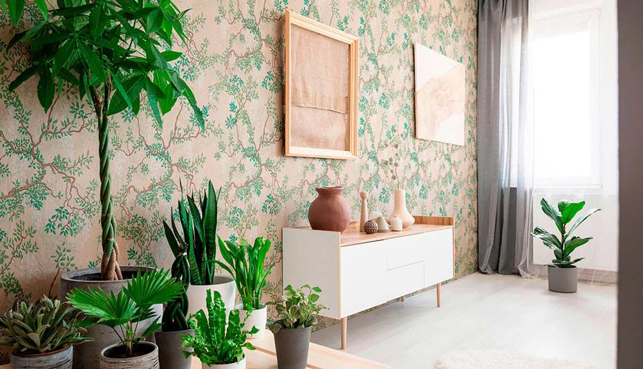 Lots of house plants and botanical wallpaper.