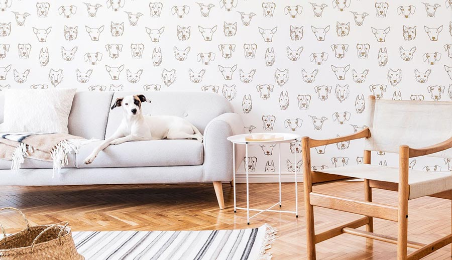 White dog on a white couch with white dog-print wallpaper.