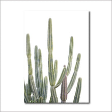 Load image into Gallery viewer, Desert Cactus Prints