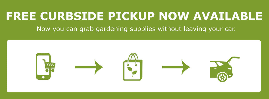 Curbside Pickup Infographic