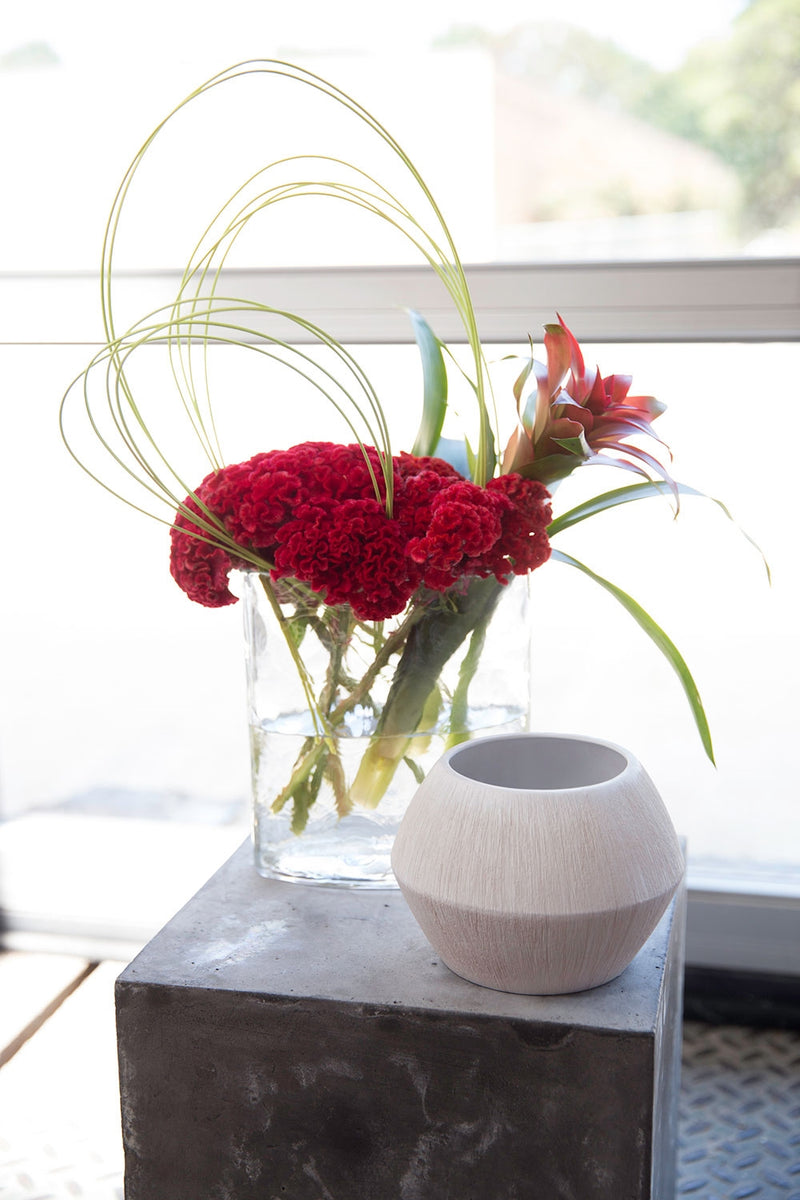 Matte white textured pot next to a glass vase with water and bright red flowers.