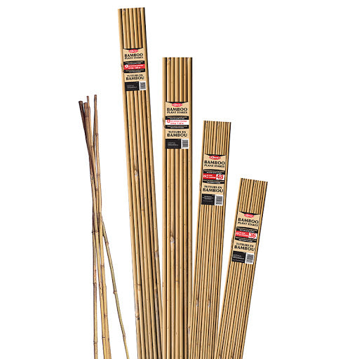 Bamboo Sticks (15 pcs./polybag)