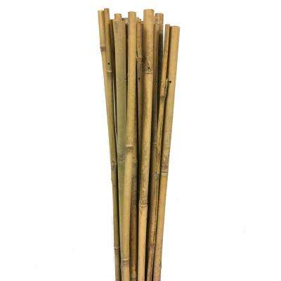 Single Bamboo Sticks