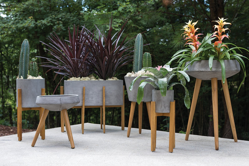 Grouping of grey concrete containers with wooden legs styled with succulents and tropical plants.
