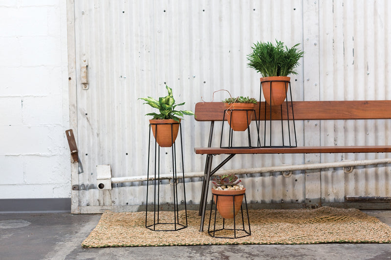 A grouping of three plant stands with black metal geometric legs and a terracotta pot styled with green leafy plants.
