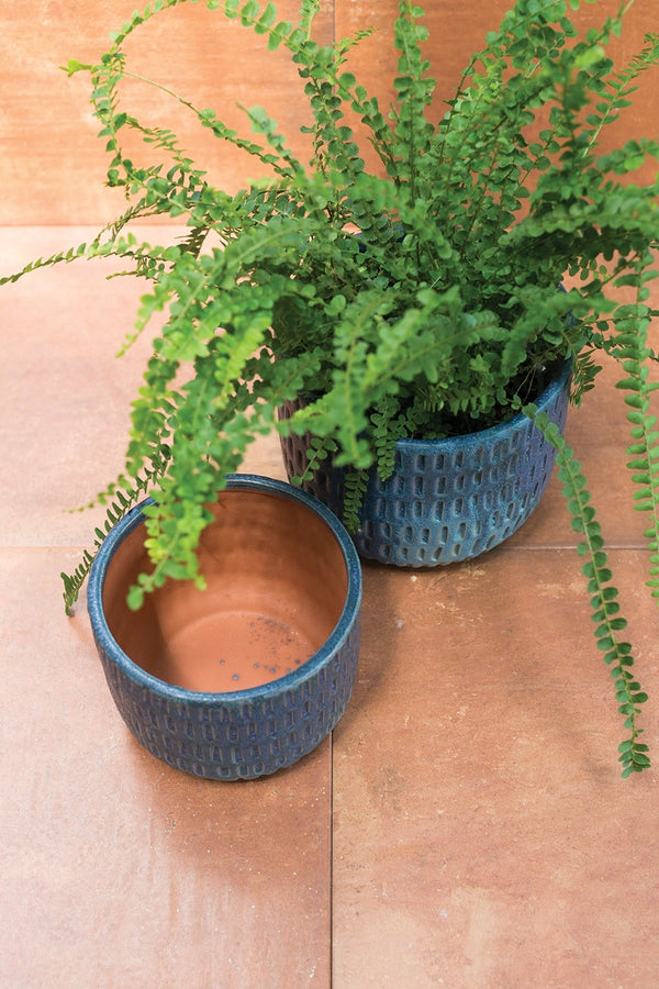 Two beautiful textured navy blue ceramic pots styled with a bushy green fern.