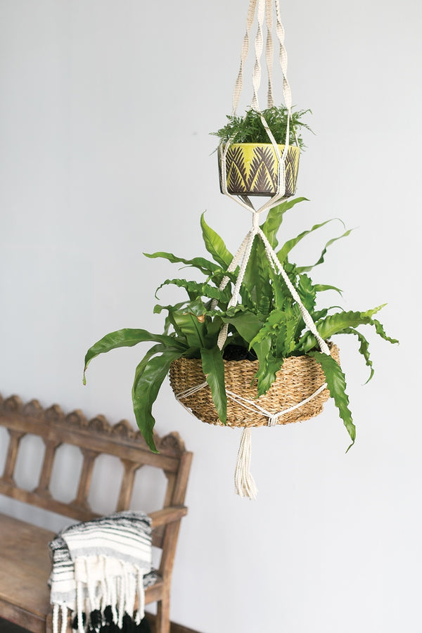 Designed with 100% white/cream cotton rope, the macrame plant hanger features two pockets to hang a small and large containers styled with green ferns.