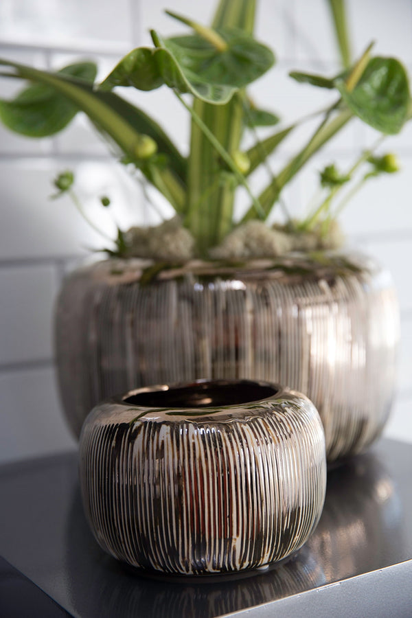 Beautiful ceramic gold and copper finish styled with green plant.