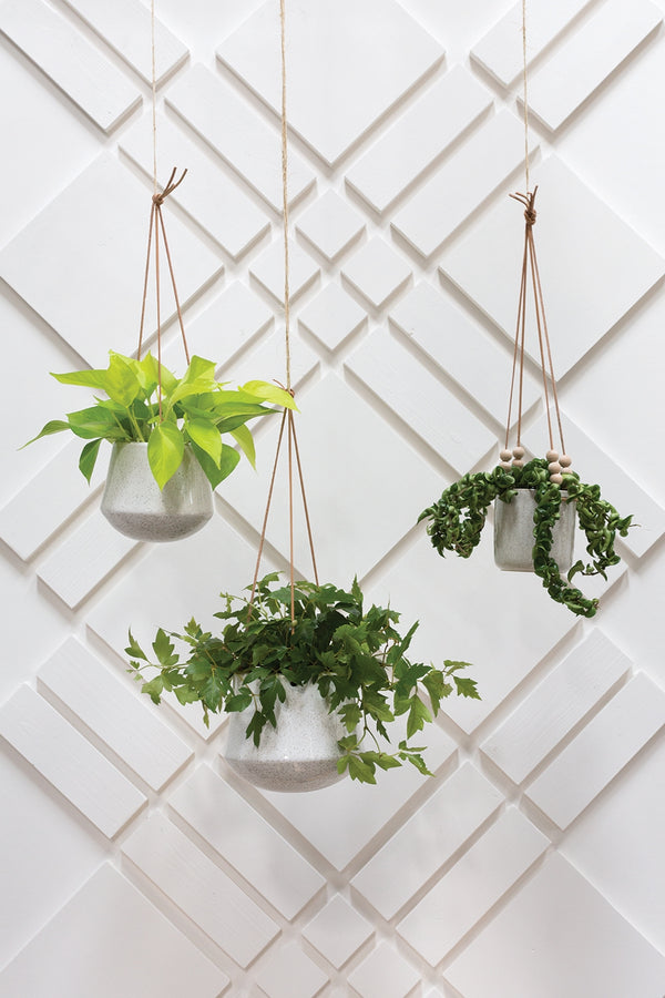 Three hangers with white speckled ceramic pot with light brown leather straps all styled with leafy green plants.