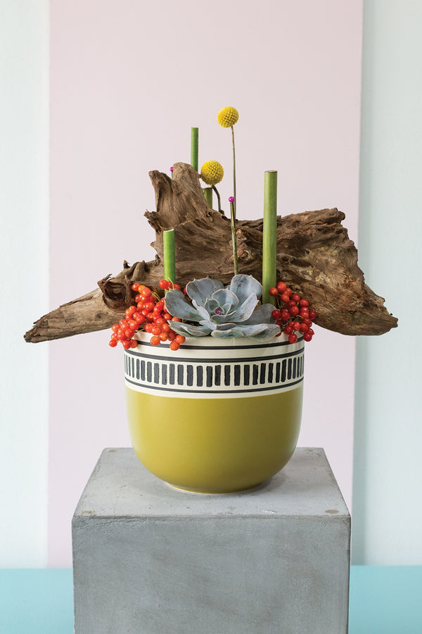 Chartreuse, beige and black coloured pot with hand-applied two-tone design trim styled with colourful plants.