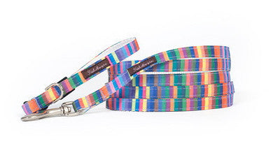 Teacup Rainbow Candy Stripe Collar/Harness/Lead - 112