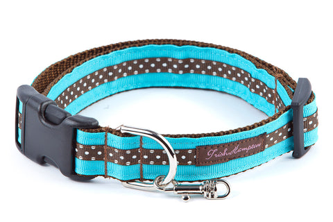 Aqua/Chocolate Mini Polka Dog Collar