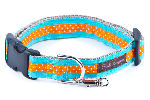 Aqua/Orange Mini Polka Dog Collar