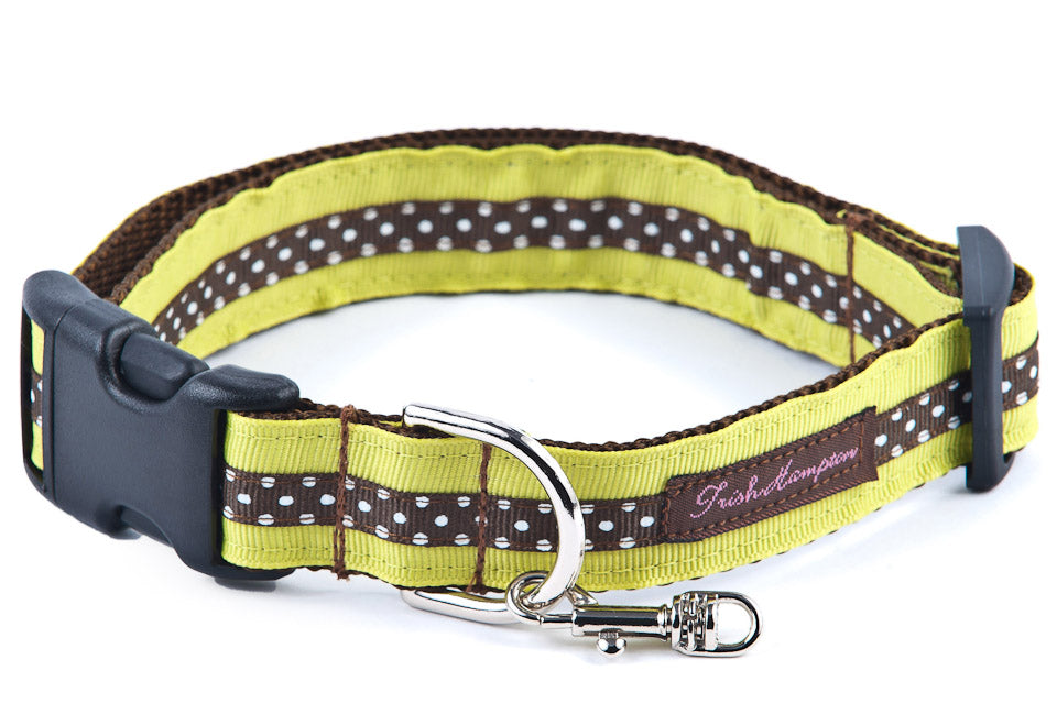 Lime/Chocolate Mini Polka Sale Dog Collar