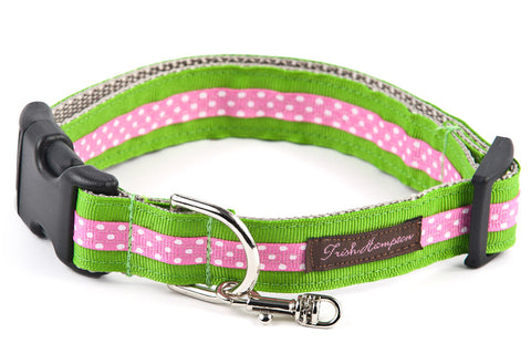 Apple Gree/Hot Pink Mini Polka Dog Collar