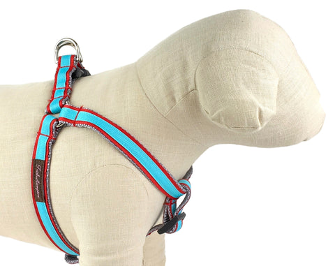 Red/Aqua Dog Harness - 330