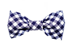 * Blue/White Gingham