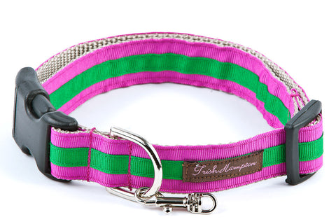 Fucshia/Green Stripe Sale Dog Collar - 312