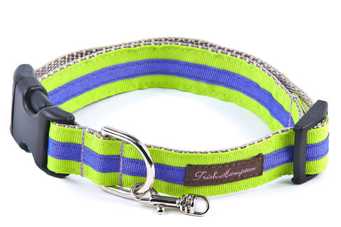 Neon Green/Purple Stripe