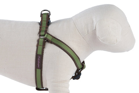 Chocolate/Green Stripe  Dog Harness - 301