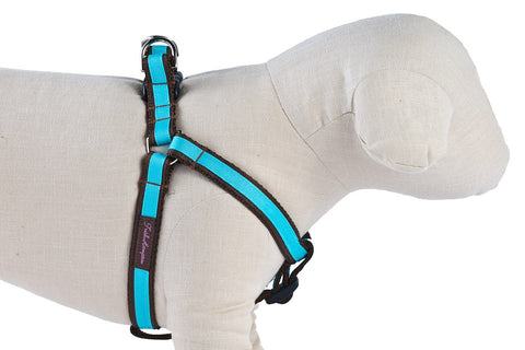 Chocolate/Turquoise Stripe Dog Harness - 304