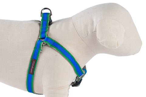 Kelly Green/Bright Blue Stripe Dog Harness - 326