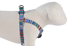 Rainbow Candy Stripe Dog Harness