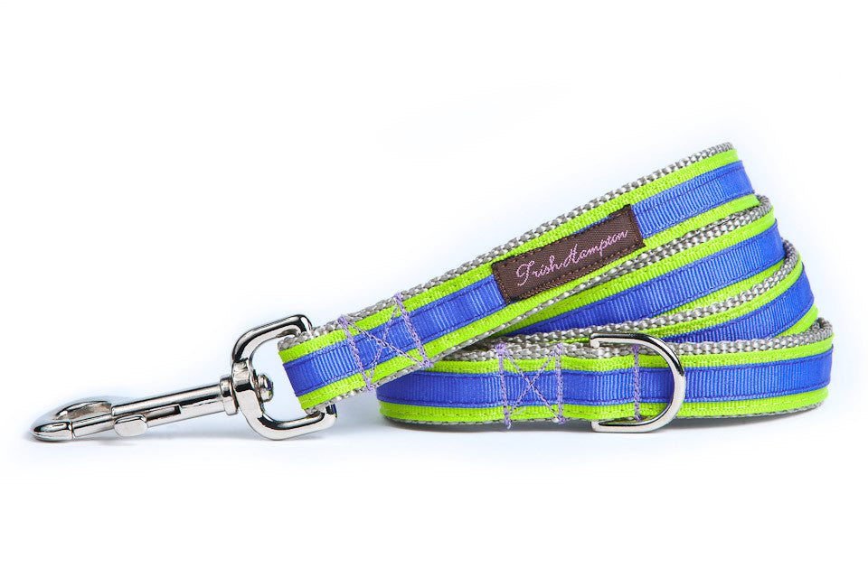 Neon Green/Purple Stripe 6ft Sale Dog Leash