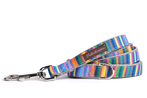 Rainbow Candy Stripe Dog Leash