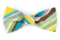 Earthy Diagonal Stripe Dog Bow Tie - 913