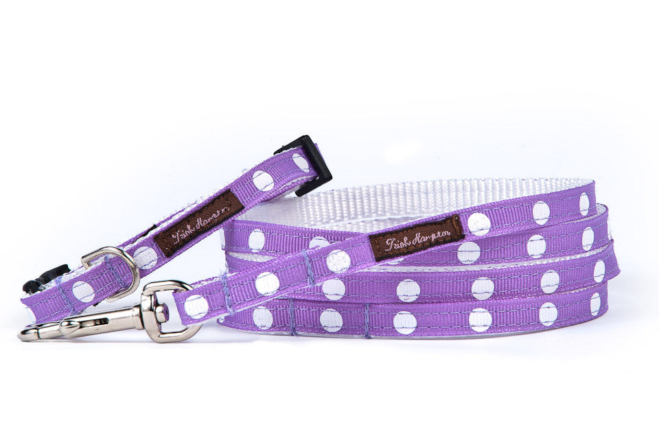 Teacup Purple/White Dots Collar/Harness/Lead - 119