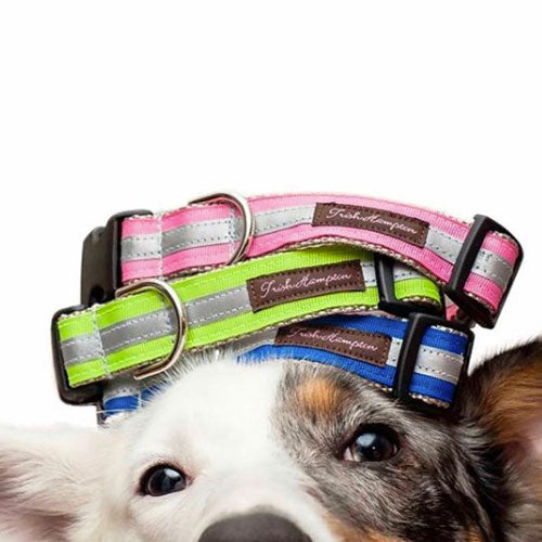 Handmade dog collars designed by local artists